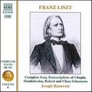 Liszt - Complete Piano Music vol. 6 | Naxos 8553656