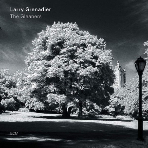 Larry Grenadier: The Gleaners (Vinyl LP)
