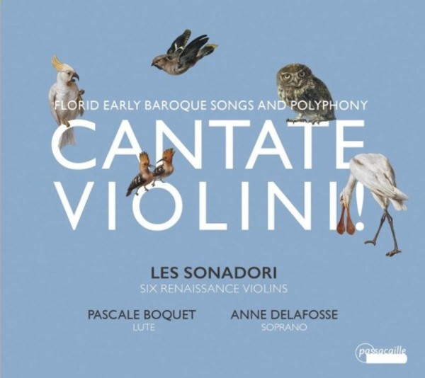 Cantata Violini: Florid Early Baroque Songs and Polyphony | Passacaille PAS1056